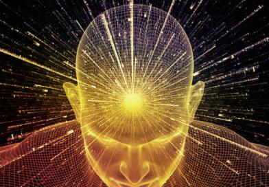 Vergonha – Entenda o primeiro nível de consciência do ser humano, segundo Dr. David Hawkins